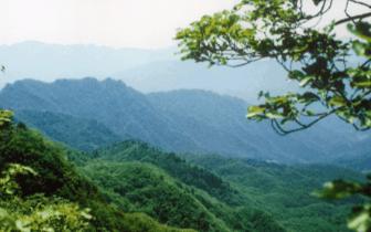 黑龙江省开展自然保护地检查行动
