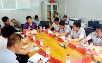 发展|卢氏县:加快皇菊产业发展 下步这么干!