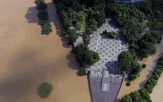 第三轮洪峰13.9米!长江泸州段迎今夏入汛最大洪峰