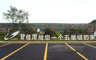 实景示范区开放,看碧桂园德兴·时代城如何惊艳龙岩!
