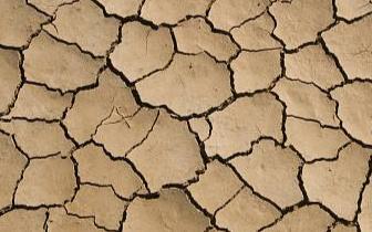 江西省启动省级干旱救灾预警响应