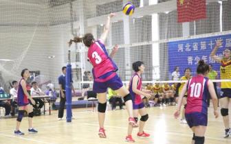 石家庄排球项目包揽省运会四金 女子甲组七
