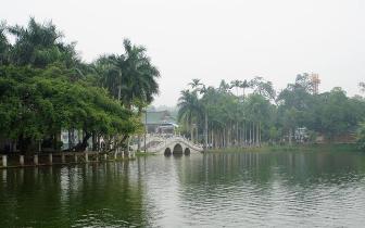 """南宁南湖湖底""""种草""""净水质 清澈湖畔增秀美"""