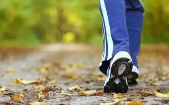 每天6000步走掉三大慢性病!但关键是要这样走