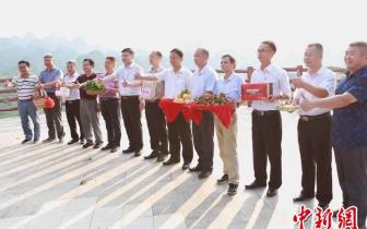 """广东百名""""乡村新闻官""""为农产品代言"""