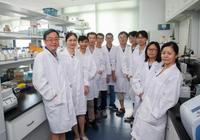 打开人造生命的大门 中国科学家人工合成单染色