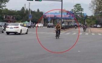 非机动车:逆向行驶酿事故 靠右行车最安全