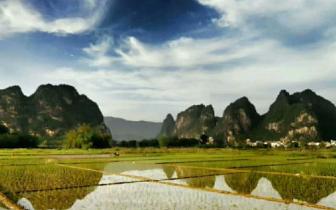 醇厚绵长、芬芳四溢的原生态米产自哪里?
