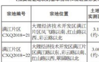 大理满江片区两块国有建设用地使用权出让拍卖公告