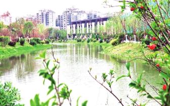 福州台屿河水清岸绿 臭水沟变身生态公园