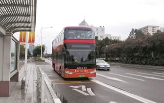 巴士|肇庆4辆双层观光巴士上路 霸气的红色风景线穿梭街头