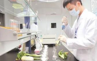海峡农副产品批发市场农残检测中心完成改造升级