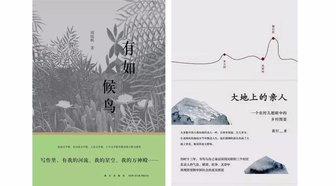 周晓枫《有如候鸟》(其中收录《离歌》)和黄灯《大地上的亲人》