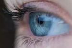 DeepMind推出AI可检测超50种眼疾