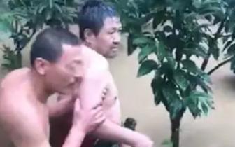 一中年男子落水!多人跳进水中联手施救!