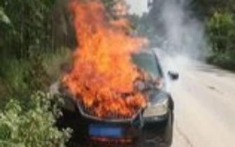 上思:小轿车行驶过程中自燃 司机弃车逃生