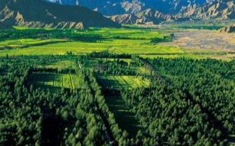 唐山获得中央财政林业生态保护恢复资金35.28万元