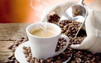 天天都靠咖啡提神续命,知道哪种咖啡最适合自己吗?
