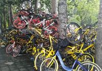 """北京共享单车用户上下班常""""一车难求"""":单车去哪"""