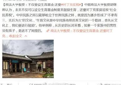中国政法大学教授回应丁克征税:之前观点被误读