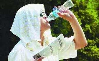 暑热!今明两天申城最高气温已回到32℃以上