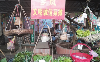 """""""无人售菜菜市""""成景点引来众多游客"""