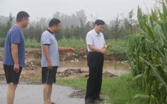 宁陵县委书记李振兴到石桥镇查看受灾情况
