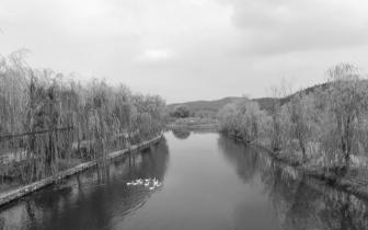 岳麓区小微水体整治收实效 河道环境质量大幅改善