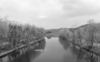 岳麓小微水体整治收实效 村里河中游来野生小鱼