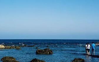 绝美珊瑚礁海景步道 富山护渔区成热门新景点
