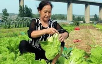 交口乡:党建引领 企业参与 全力助推脱贫攻坚