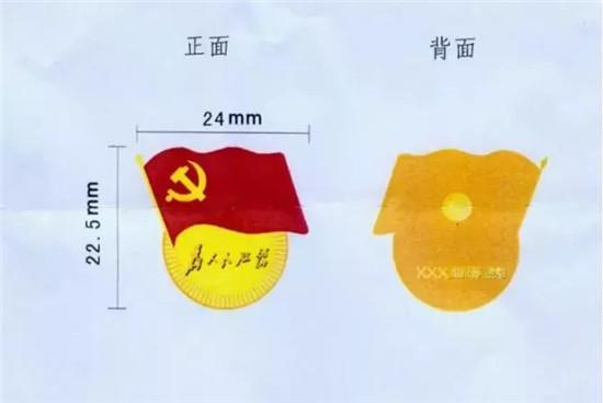 浙江嘉兴要求24万党员工作时间统一佩戴党员徽章