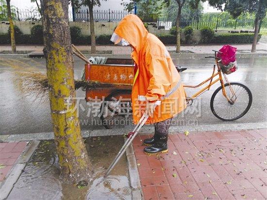 唐山:环卫工大姐在雨中捡拾落叶