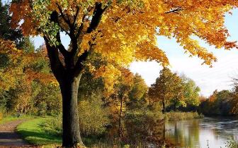 广西迎来气象意义上的秋天 处暑到 白天酷热夜渐凉