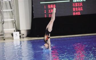 跳水比赛增设选材组 后备人才梯队建设更上