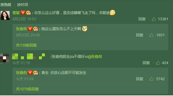 张嘉倪怒怼键盘侠