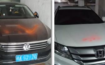 """南宁蓝山小区多辆车遭喷漆 涉事女子称""""在作画"""""""