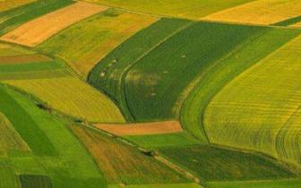 唐山农业产业化龙头企业协会又添新成员