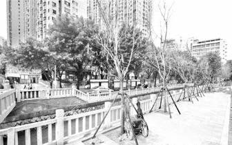 本月底14条内河完成景观提升 为市民提供休闲场所