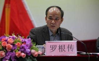 广西交投集团党委委员罗根传接受纪律审查和监察调查
