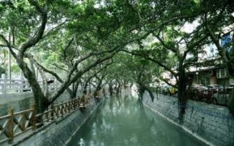 仓山推进水系治理 31条河道年内分期分批完成建设
