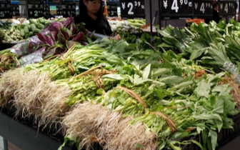 """""""中国蔬菜之乡""""受灾 福州市菜价近期涨约一成"""