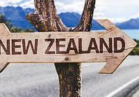 新西兰移民部长称 留学生政策年底还会再评估