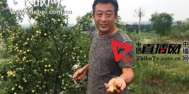 """邯郸峰峰矿区""""煤老板""""转型种植大户"""