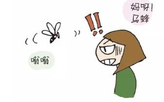 新知丨被马蜂蛰了怎么办?这幅漫画告诉你!