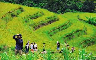 琼中等三市县获中央财政农业资源及生态保护补助资金
