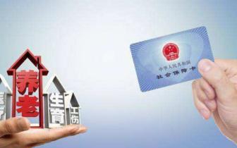 蚌埠市城镇职工中女性参保人数增加