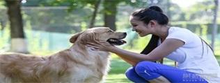 银座宠物节|临沂第一届宠物节来袭,可爱到犯规~