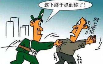 公安局 吉林省高速公路公安局民警 精心布控抓获一名网逃