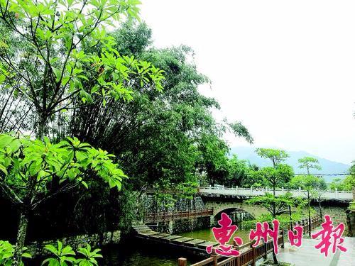 长宁镇依托旅游资源 建起特色民宿